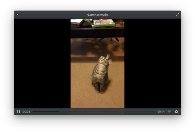 Reproductor de vídeo de Elementary OS