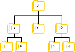 estructura